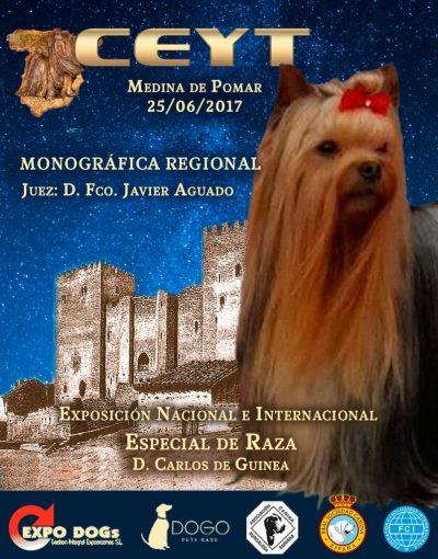 Monográfica Medina de Pomar 2017